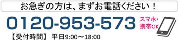 0120953573